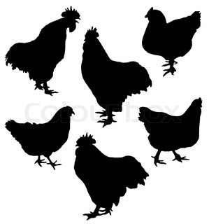 Vector of 'vector, hen, icon'