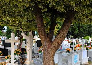 White Tombstones Of Greek Orthodox Cemetery In Rhodes
