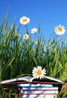 Stack of books on summer background with grass, ox-yey daisy flowers and blue sky