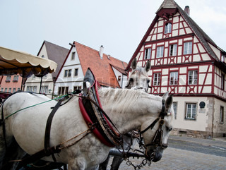Horse Carriage and Frame Houses in Rothenburg, Germany