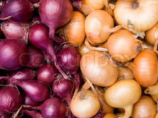 Agricultural background, a pile of beautiful bulb onions
