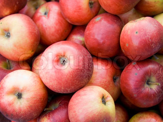 Agricultural background, a pile of beautiful red apples