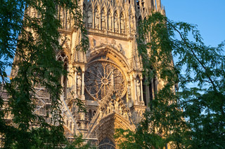 view through trees on Notre Dame Cathedral in Reims, France