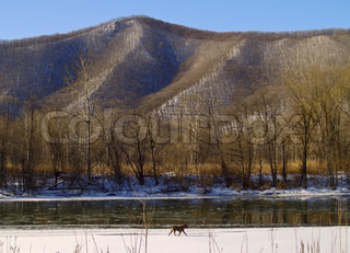 Winter landscape with the river at a mountain slope