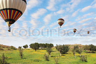 Four large bright balloons with a passenger basket fly by over spring blossoming fields