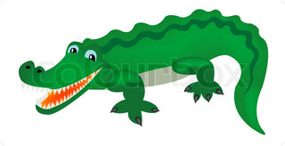 Reptile crocodile on white background