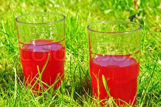 Fresh rhubarb juice on picnic