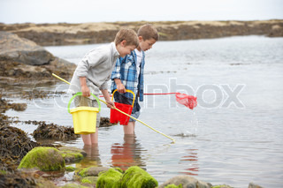 Two boys collecting shells on beach