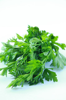 bunch of fresh green organic parsley