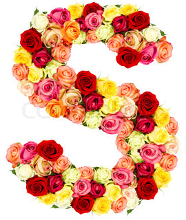S Alphabet In Flowers Letter K - flower alphabet isolated on white background | Stock Photo ...