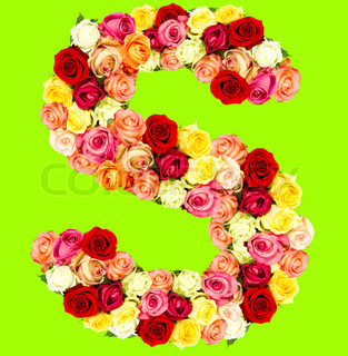 S, roses flower alphabet, isolated on brigth green
