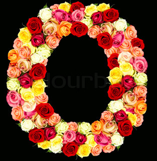 Z Alphabet In Rose Letter O made from red petals rose on white, stock photo