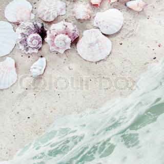Sea Beach with Shells on Sand and Serf Square Background