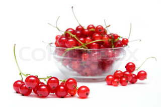 branch of red currants against the background of bowl with berries