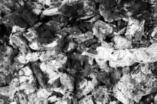 Close up of a pile of grey ashes from the burned wood