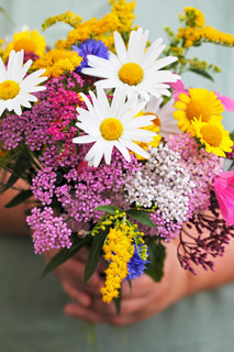 Woman holding a bouquet of summer flowers in her hands.