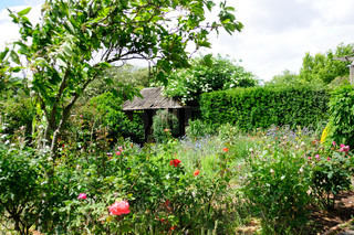 Image of 'garden, summer, cottage'