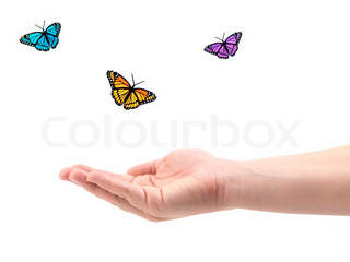 A female hand with butterflies isolated against a white background