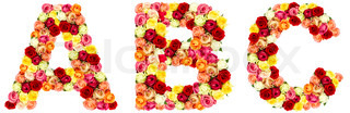 Z Alphabet In Rose ABC, roses flower alphabet isolated on white | Stock Photo | Colourbox