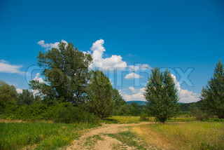 field road and summer sky background