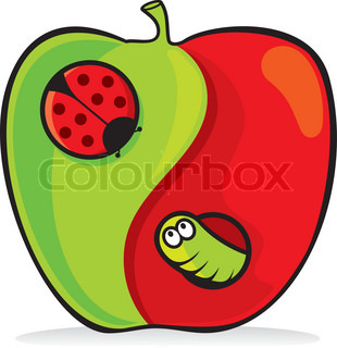 Yin yang apple cartoon with ladybug and worm