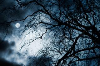 unheimlich dunklen Landschaft mit nackte Bäume, Vollmond und Wolken