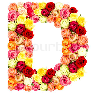 Z Alphabet In Rose roses flower alphabet isolated on white | Stock Photo | Colourbox