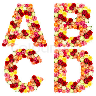 Z Alphabet In Rose ABCd, roses flower alphabet isolated on white | Stock Photo ...