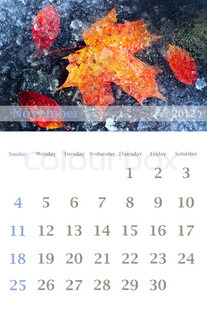 Page of 2012 November month wall calendar (size 11x17 inch) with seasonal nature photo