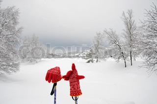 Red gloves in winter landscape