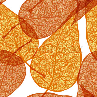 vector background with autumn leaves, clipping mask eps 10