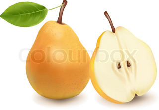 Photo-realistic vector illustration of the two ripe pears with the green leafs.