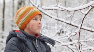 kid shakes branch of winter tree snow falls down