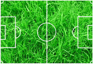 Soccer field with white lines on green grass background