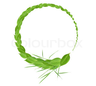 Beautiful round frame made from freshness green leaves and grass
