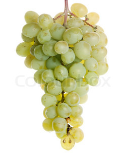 green grapes isoalted on white