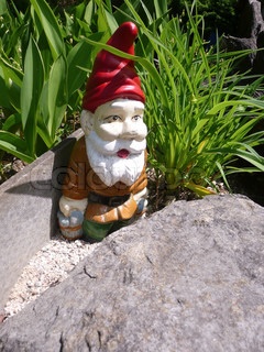 A garden gnome, standing behind a stone