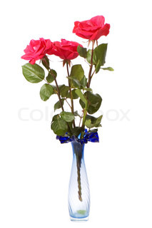 Three red roses isolated on the white