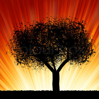 A tree at sunrise. EPS 8 vector file included
