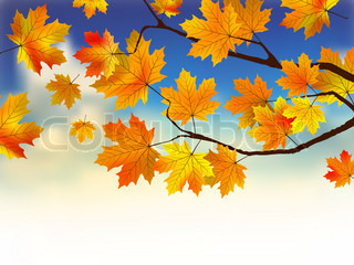 Fall leaves in front of blue sky with clouds. EPS 8 vector file included