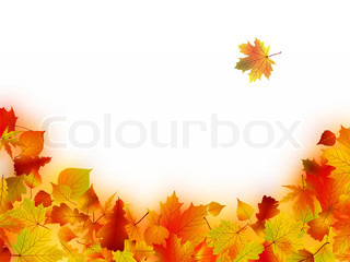 Decorative frame from bright autumn leaves. EPS 8 vector file included