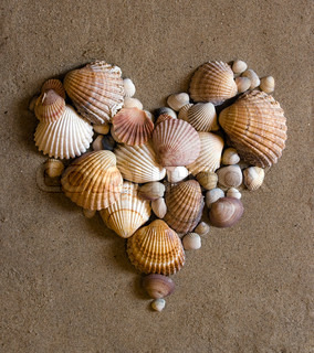 A shell heart on sand