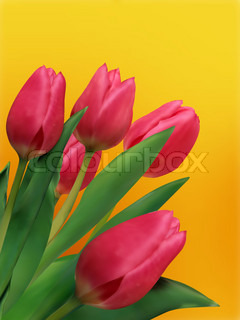 Bouquet of tulips and as a background for post card. EPS 8 vector file included
