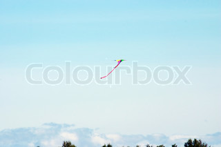Kite in the blue sky. Airshow, Mochishe airdrome, Novosibirsk