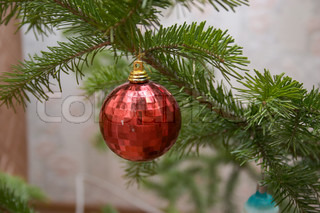 Red Christmas ball by tree