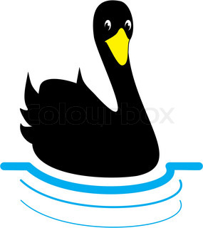 Black swan floating on the water – vector illustration isolated