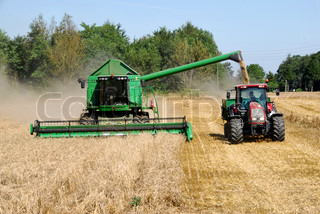 Combine harvester harvesting wheat and a tractor collecting the grain