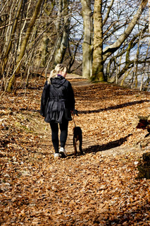 Female walking a dog in the forest