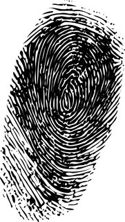 Abstract vector fingerprint on white