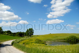Landscape with a path and lake. The sky is blue with fluffy clouds.
